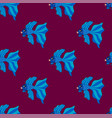 siamese fighting fish on purple background vector image vector image