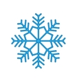 Snowflake winter isolated on white background vector image