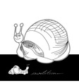 template for card with funny snail vector image vector image