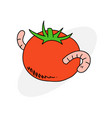 tomato with worm vector image vector image