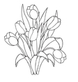 tulips flowers ornamental black and white vector image