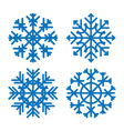 Various winter snowflakes set vector image vector image