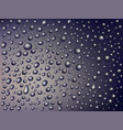 water drops on gray background vector image
