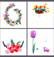 Painted bouquet tulips flowers vector image