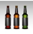 Set of Glass Bottles Dark Beer with Black labels vector image