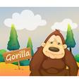 A gorilla beside a signboard vector image vector image