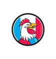 French Rooster Head France Flag Circle Cartoon vector image vector image