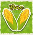 fresh corn design vector image vector image