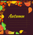 frame with abstract autumn brightly colored leaves vector image