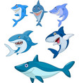 cartoon shark collection set vector image vector image