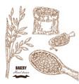 cereals set hand drawn sketch oats bag vector image vector image