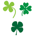 Clovers vector image vector image