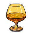 glass of cognac vector image vector image