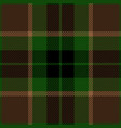 green and brown tartan plaid seamless pattern vector image vector image