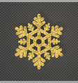 luxury snowflake created from ornamental patterns vector image vector image