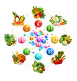 nutrition of vitamins and minerals vector image vector image