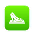 princess shoes icon green vector image