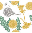 seamless pattern with hand drawn pastel dandelion vector image