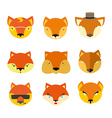 Set foxes muzzle different nature vector image
