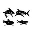 shark logo mascot design set modern concept vector image vector image