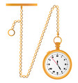 watch on a chain vector image