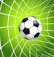 net with the ball vector image