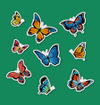 decorative colored butterflies stickers set vector image