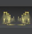 garden lights transparent background vector image