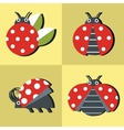 Ladybug icons in style on yellow background vector image vector image