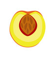 peach icon filled flat sign vector image vector image