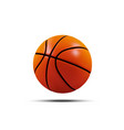 basketball ball isolated on a white vector image