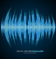 Graphic Equalizer Display vector image vector image