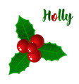 hand drawn holly ilex branch with berry and vector image