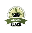 set black olives with leafs vector image vector image