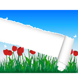 Ripped Tulip Meadow Background vector image