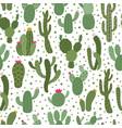 cactus pattern seamless houseplant pattern vector image