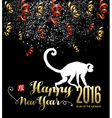 Chinese new year 2016 firework silhouette night vector image vector image