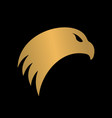 hawk head modern logo creative concept vector image vector image