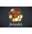 Plate of falafel Top view vector image vector image