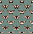 seamless pattern with bright butterflies vector image vector image