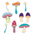 stylized mushrooms in cartoon style vector image