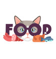 cat requires food meal requirement of domestic vector image vector image