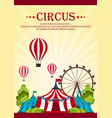 circus poster amazing show flat vector image vector image
