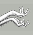 female hands stretching palm up vector image vector image