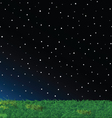 Green Grass Night Sky Stars Landscape vector image vector image