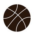 school education basketball ball sport supply vector image