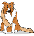 collie purebred dog cartoon vector image vector image
