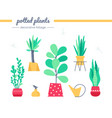 decorative foliage collection - set vector image vector image