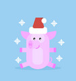 pig in santa claus hat vector image vector image