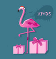 pink flamingo with white fairy lights and gift vector image vector image